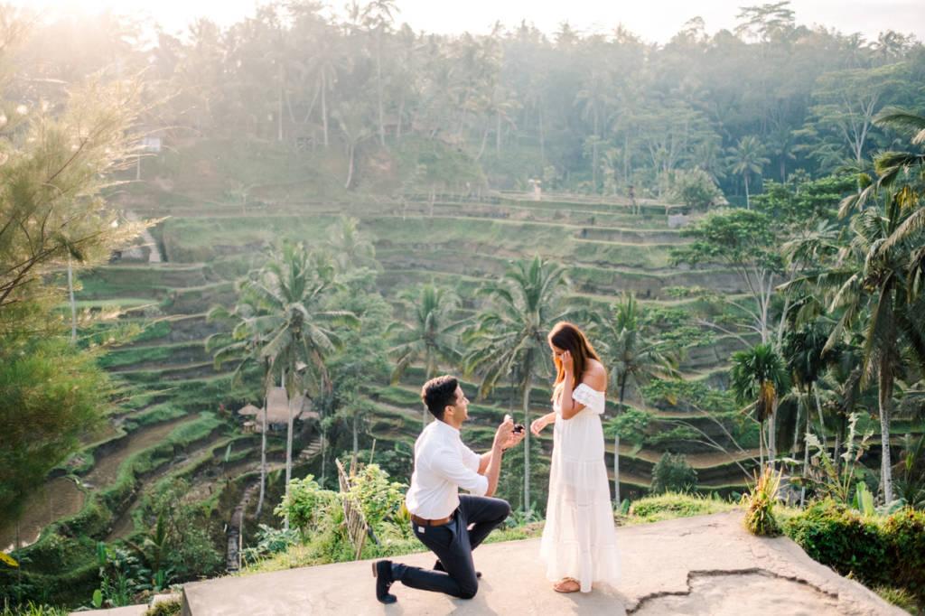 bali proposal rice field